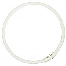 Tub circular sylvania T5 55W 4000K