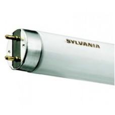 Tub Neon Sylvania F14W/54-765