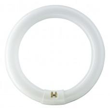 Tub Fluorescent Circular Philips TL-E 32W/865